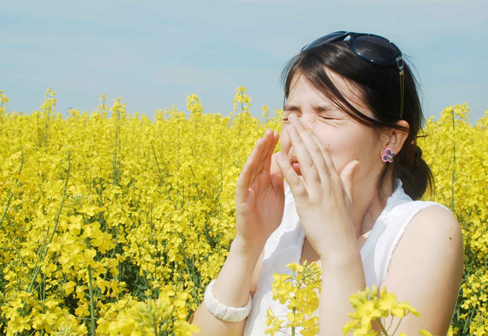 Hay Fever Nothing to Sneeze at: Specialists