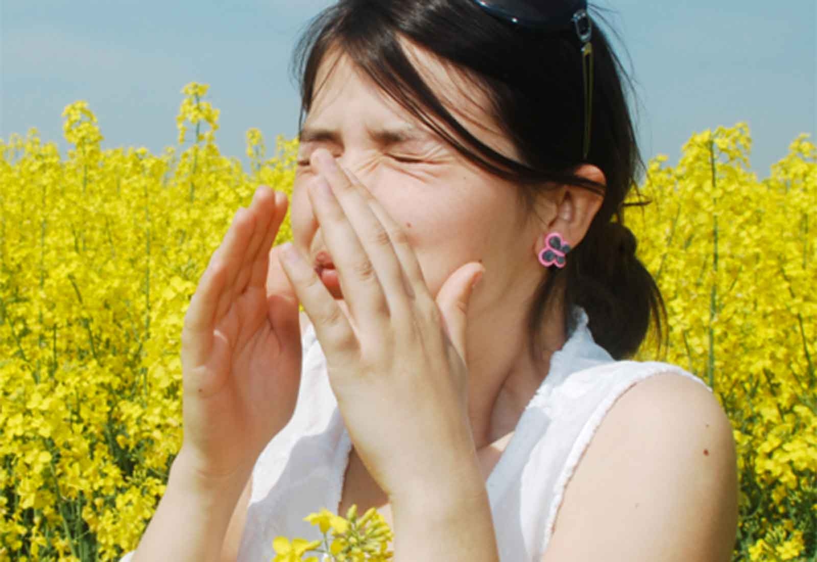 Nasal, Sinus Allergy & Infection